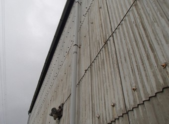 塗膜の経年変化によって色褪せた工場の外壁